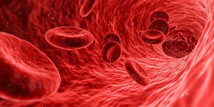 Les effets de la cryothérapie sur la circulation sanguine